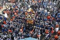 「つきじ獅子祭」で、市場内をみこしを担いで通る人たち=東京都中央区で2018年6月8日、宮武祐希撮影