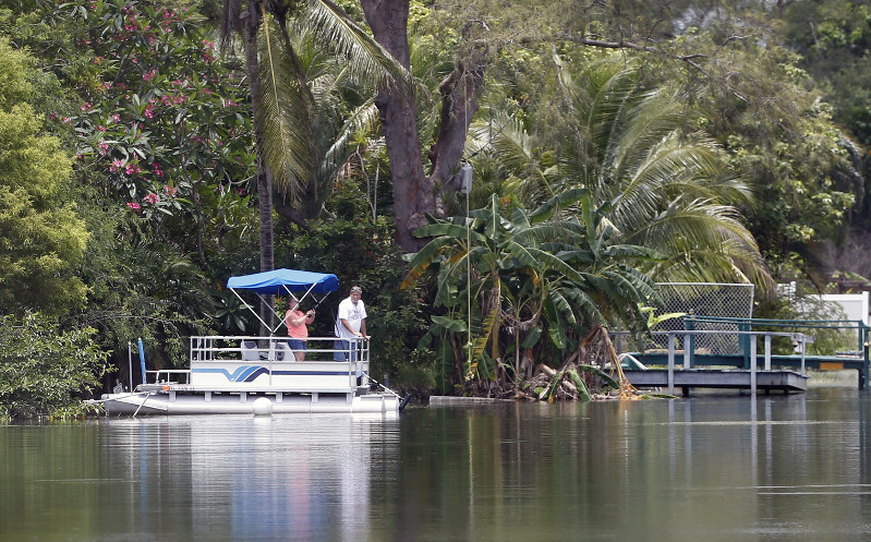 Authorities identify woman bitten by alligator