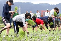 University students covered in mud plant rice saplings in a drained paddy in the town of Namie, Fukushima Prefecture, on May 19, 2018. (Mainichi)