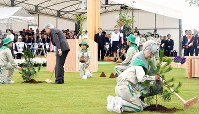 Emperor Akihito and Empress Michiko plant trees during the 69th national tree-planting festival in the city of Minamisoma, Fukushima Prefecture, on June 10, 2018. (Pool photo)