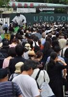 ジャイアントパンダの「シャンシャン」が1歳の誕生日を迎えて観覧のため訪れた大勢の人たち=東京都台東区の上野動物園で2018年6月12日午前8時16分、宮間俊樹撮影