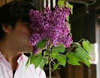 クラフトジンの製造を一人で手がける越川明征さんは千葉県出身。札幌市の花であるライラックの香りを初めて嗅ぎジンに生かせると感じた。現在、季節商品として新たなレシピで新商品を開発するため、ライラックの花を募集している=札幌市南区で2018年5月29日、貝塚太一撮影