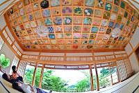 畳に寝転んで天井画を眺められる、正寿院の客殿「則天の間」。鳥のさえずりや川のせせらぎ、木の葉のそよめきが聞こえてきて、心が落ち着く=京都府宇治田原町で、川平愛撮影(魚眼レンズ使用)