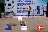6月19日、サッカーのワールドカップ(W杯)ロシア大会で、サマラの動物園で飼育され予言ヤギとして知られる「ザビヤカ」が、21日に行われるCグループのデンマーク対オーストラリア戦は2─2の引き分けと予想した。引き分けのサインの前に置かれた餌の入ったボウルに走り寄った(2018年 ロイター/David Gray )