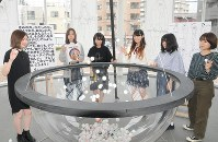 Nihon University College of Art students throw balls into a bowl-shaped pool after inscribing them with frank opinions, at the university's Ekoda campus in Tokyo's Nerima Ward, on June 14, 2018. (Mainichi)