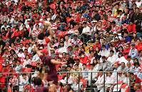 雨の中、観戦に訪れたラグビーファン=愛知・豊田スタジアムで2018年6月23日、大西岳彦撮影