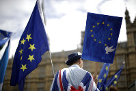 In this June 20, 2018 photo, an anti-Brexit, pro-EU supporter holds an EU flag and a placard in London. (AP Photo/Matt Dunham)