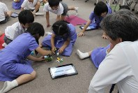自分で考えた物語に沿ってブロックで作った「動物」が動くようにプログラミングし、発表する児童ら=東京都文京区で