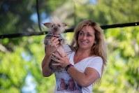 Josie, with owner Linda Elmquist. (Photo by Reuben Monastra)