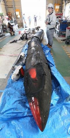 炎上後に回収した小型ロケット「MOMO(モモ)」2号機について説明するインターステラテクロノジズの稲川貴大社長(右)=北海道大樹町で2018年6月30日、貝塚太一撮影