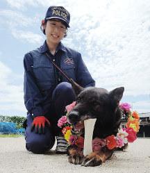 引退したブリックス号(右)と鑑識課警察犬担当の岡奈央子巡査長=大阪市此花区北港緑地2の警察犬訓練センターで、村田拓也撮影