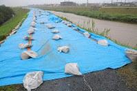地震後に敷かれた堤防のブルーシートと増水した芥川=大阪府高槻市で2018年7月5日午後5時58分、三村政司撮影
