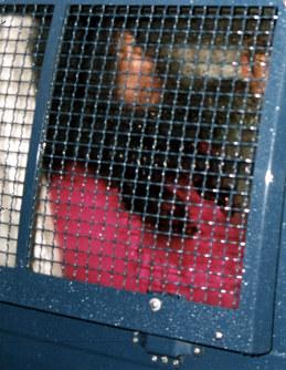 平成7年5月16日、捜査当局はオウム真理教代表・麻原彰晃、本名・松本智津夫らを殺人容疑で逮捕した。松本容疑者は山梨県上九一色村の第6サティアン中3階の隠し部屋にいたところを逮捕された。