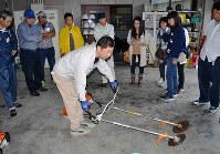 刈り払い機の操作方法を見学する受講者=和歌山県かつらぎ町の県農林大学校で、松野和生撮影