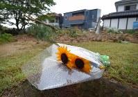 土砂崩れで多数の死者や行方不明者が生じている地域。現場から少し離れた場所に、ひまわりの花束が置かれ、雨に濡れていた=広島県熊野町で2018年7月8日午後5時11分、手塚耕一郎撮影
