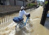 川の水が流れ込み、川のようになった道路で自転車を押す女性。昨日に比べて、水流が増えているという=広島市安芸区矢野西で2018年7月9日午前9時47分、手塚耕一郎撮影