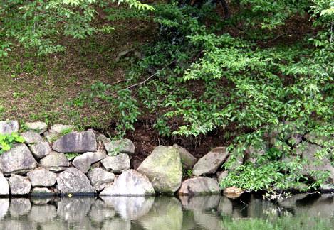 【滋賀🏯】豪雨で国宝・彦根城内堀の一部が崩落 国の特別史跡 ->画像>8枚