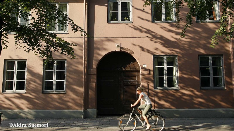 木漏れ日の中、自転車に乗る女性=オスロで
