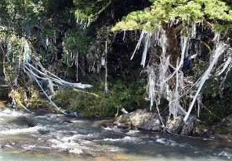 西日本豪雨:樹脂資材30トンが津...