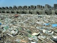 荒川の土手に散乱するプラスチックごみ=高田秀重・東京農工大教授提供