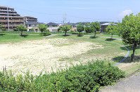 Wago Park, which has few areas with shade, is pictured in Toyota, Aichi Prefecture, on July 18, 2018. (Mainichi)