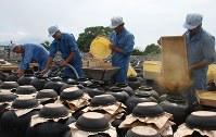 屋外に並んだつぼの中に原料を仕込む職人たち=坂元醸造で、川畑さおり撮影