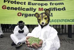 欧州委員会の建物前で、遺伝子組み換え作物の利用に反対する環境保護団体「グリーンピース」のメンバー=ベルギー・ブリュッセルで2005年12月2日、AP