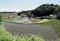 棚田が広がるのどかな風景の千堤寺地区は「隠れキリシタンの里」と呼ばれている=大阪府茨木市で、幾島健太郎撮影