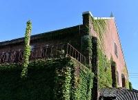 外壁に絡まるツタが、使われないまま放置された年月の長さを感じさせた=広島市南区で2018年8月1日、山田尚弘撮影