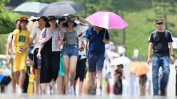 皇居の見学を終えてバスに戻る観光客たち。強い日差しが降り注ぐ中、ほとんどの人たちが日傘に入り日差しを避けるように歩いていた=東京都千代田区で2018年7月23日、宮間俊樹撮影