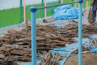 Firearms and swords that were discovered buried at a construction site on a playground are seen at the municipal Tanashi Elementary School in the Tokyo suburb of Nishitokyo on Aug. 6, 2018. (Mainichi)