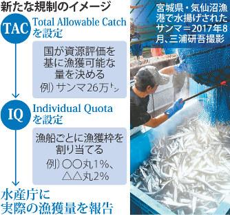 水産庁:「漁獲量で規制」本腰 ...