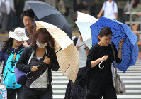 People hold their umbrellas tightly as they walk in strong winds due to Typhoon Shanshan in Tokyo's Shinjuku Ward, on Aug. 8, 2018. (Mainichi)