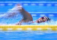 競泳女子1500メートル自由形で3位に入った小堀倭加=ジャカルタで2018年8月19日、宮間俊樹撮影