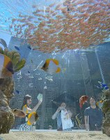 Passersby stop to gaze at fish in a large tank set up in Ginza Sony Park, in Tokyo's Chuo Ward, on Aug. 25, 2018. (Mainichi)