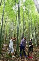 火祭りで担ぐたいまつに使う竹の選び方を青年会の伊藤和之さん(28、左端)と遠藤健一さん(43、中央)に教えてもらう小学生=福島県富岡町で2018年8月11日、竹内紀臣撮影