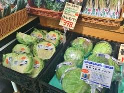 1玉398円の「寺田さんの甘いキャベツ」は、スーパーまるおかの大人気商品=小高朋子撮影