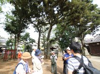 関東大震災後の朝鮮人虐殺事件ゆかりの地で行われたフィールドワーク=東京都世田谷区で2018年8月19日、井田純撮影