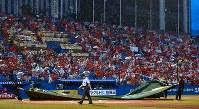 【ヤクルト-広島】一回表、広島の攻撃中に雨がひどくなり、試合が一時中断。本塁上にもシートが敷かれた=神宮球場で2018年9月1日、竹内紀臣撮影