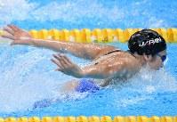 競泳女子50メートルバタフライで優勝した池江璃花子=ジャカルタで2018年8月20日、宮間俊樹撮影