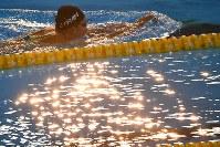 レースを前に夕日が反射するプールで練習する池江璃花子=ジャカルタで2018年8月23日、宮間俊樹撮影