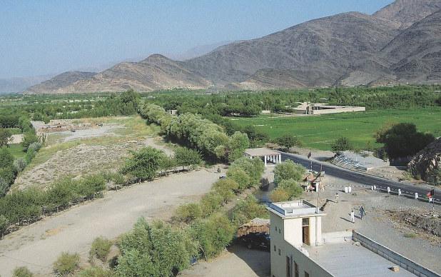 通水から4年後。一面が緑で覆われた(2010年)(ペシャワール会提供)