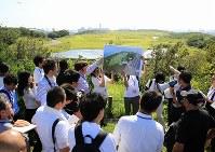 馬術が行われる「海の森クロスカントリーコース」の説明を受ける国内外の報道陣=東京都江東区で2018年9月5日午後2時半、梅村直承撮影