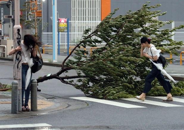 台風21号:東海3県も猛烈な暴風...