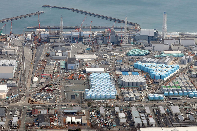 Fukushima nuclear plant worker died from radiation exposure