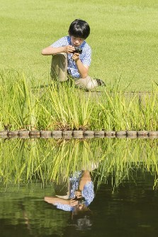 カメラでトンボを撮影される悠仁さま=東京・元赤坂の赤坂御用地で2018年8月10日撮影(宮内庁提供)