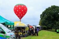 第17戦、上空には開催地栃木名産のいちごの気球が浮かぶ=JBCF提供