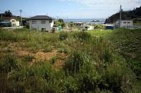 災前まで及川家の自宅や田んぼなどがあった土地。家屋は津波で全壊し、一帯には草が生い茂っていた=宮城県南三陸町で2018年9月5日、喜屋武真之介撮影
