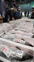 札幌市中央卸売市場での再開したセリでは時期を迎えた秋サケなどが並んだ=札幌市中央区で2018年9月8日午前5時46分、竹内幹撮影