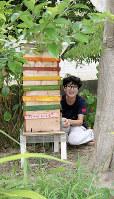 自作の巣箱でミツバチの世話をする伊藤さん=名古屋市の自宅で